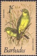 Barbados 1979 Birds a