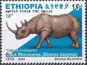 Ethiopia 2005 Black Rhinoceros c