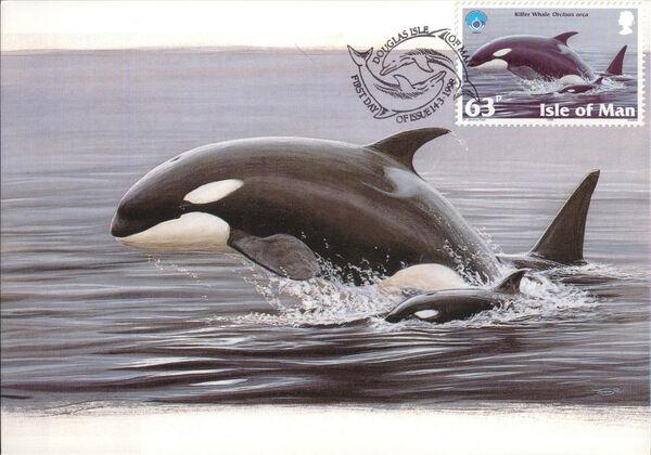 Isle of Man 1998 Year of the Ocean - Marine Mammals je