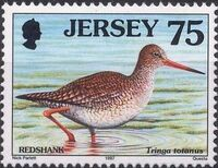Jersey 1997 Seabirds and waders g