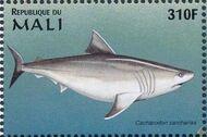 Mali 1997 Marine Life ze