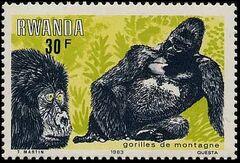 Rwanda 1983 Mountain Gorilla f