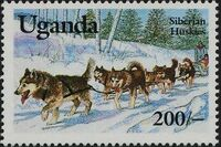 Uganda 1993 Dogs c