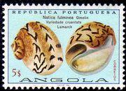 Angola 1974 Sea Shells k