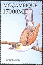 Mozambique 2002 Birds of Africa ac