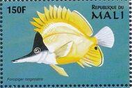 Mali 1997 Marine Life c