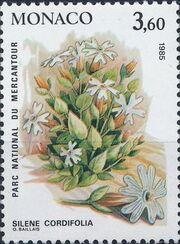 Monaco 1985 Flowers in Mercantour National Park e