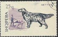 Albania 1966 Dogs c