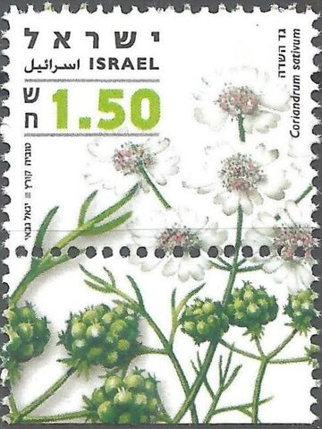 File:Israel 2006 Medicinal Herbs and Spices a.jpg