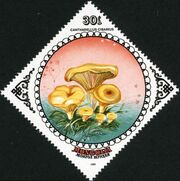 Mongolia 1985 Mushrooms b