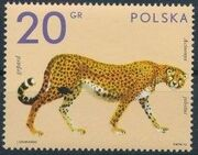 Poland 1972 Zoo Animals a