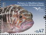 Portugal 2016 Fishes of the Mediterranean e