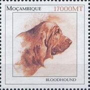 Mozambique 2002 The Wonderful World of Dogs f