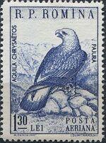 Romania 1960 Romanian fauna d