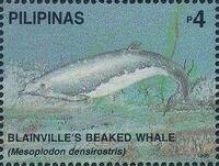 Philippines 1998 Marine Mammals Found in Philipines Waters r