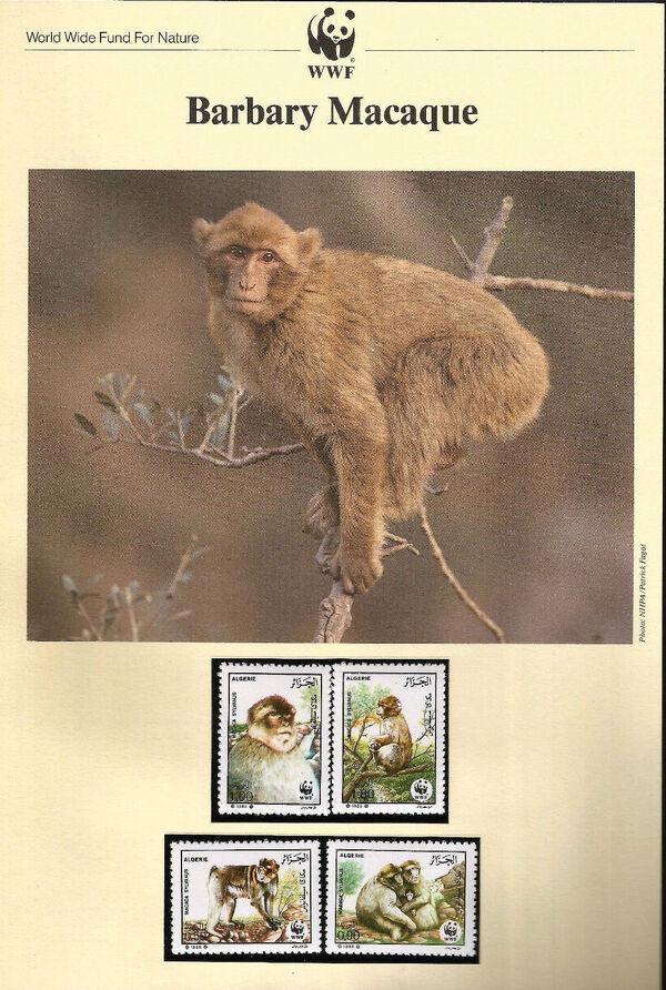 Algeria 1988 WWF - Barbary Macaque WWFIOPa