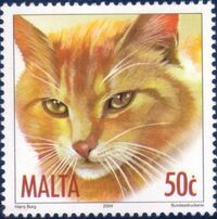 Malta 2004 Cats d