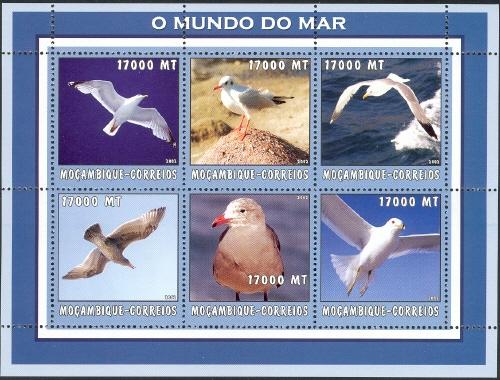 Mozambique 2002 The World of the Sea - Sea Birds 1 h