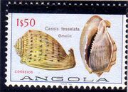 Angola 1981 Sea Shells Overprinted b