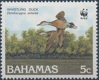 Bahamas 1988 WWF - West Indian Whistling Duck a