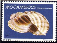 Mozambique 1980 Stamp Day - Maritime Shells of Mozambique b