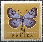 Poland 1967 Butterflies i