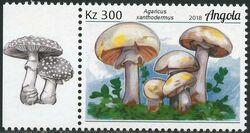 Angola 2018 Wildlife of Angola - Mushrooms a