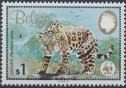 Belize 1983 WWF - Jaguar d