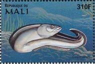 Mali 1997 Marine Life zh