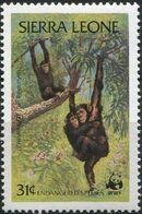 Sierra Leone 1983 WWF - Chimpanzees from Outamba-Kilimi National Park c