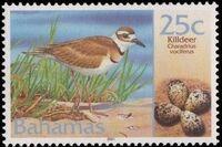 Bahamas 2001 Birds and Eggs e
