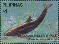 Philippines 1998 Marine Mammals Found in Philipines Waters q