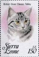 Sierra Leone 1993 Cats of the World l