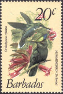 Barbados 1979 Birds g
