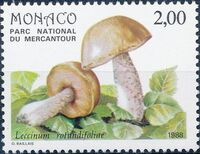 Monaco 1988 Fungi in Mercantour National Park a