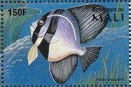 Mali 1997 Marine Life i