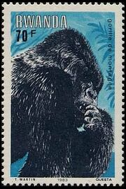 Rwanda 1983 Mountain Gorilla h