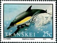 Transkei 1991 Dolphins a