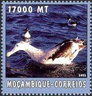 Mozambique 2002 The World of the Sea - Sea Birds 2 c