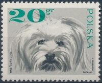 Poland 1969 Dogs a