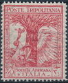Tripolitania 1928 46th Anniversary of the Societa Africana d'ltalia b.jpg