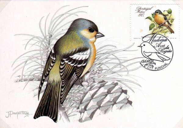 Madeira 1988 Birds from Madeira Island MC3