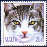 Malta 2004 Cats c