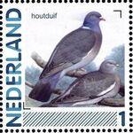 Netherlands 2011 Birds in Netherlands a24