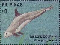 Philippines 1998 Marine Mammals Found in Philipines Waters m