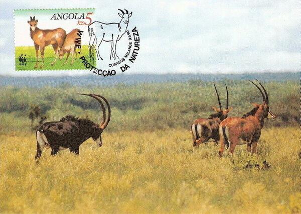 Angola 1990 WWF - Giant Sable Antelope MCd