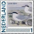 Netherlands 2011 Birds in Netherlands a21.jpg