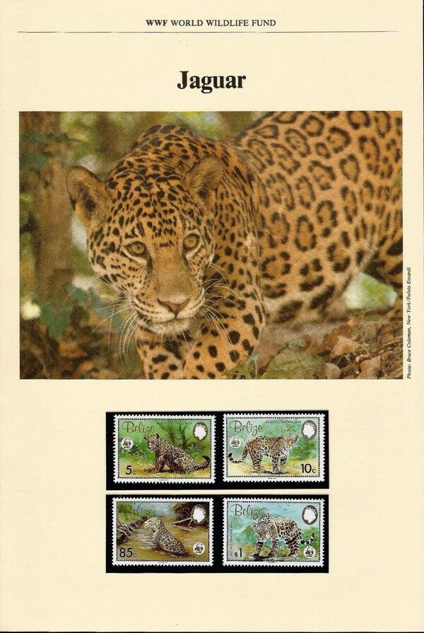 Belize 1983 WWF - Jaguar WWF-IOP