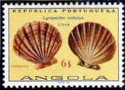 Angola 1974 Sea Shells m