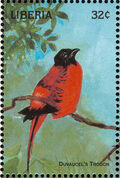 Liberia 1998 Birds of the World e